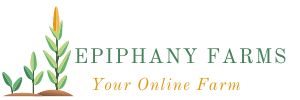 Epiphany Farm Limited